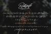 Belfast - A Dry Brush Script example image 2