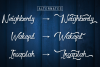 Dapka - Script Typeface example image 5