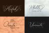 The Marvelous Font Duo example image 5