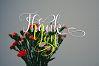 Latasha Font Family - 6 Font example image 23