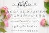 Freelove script example image 11