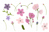 Pink Purple Flowers Arrangements Sublimation Clipart Bundle example image 2