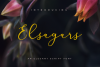 Elsagars example image 1