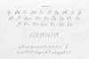 Salt and Sea Calligraphy Font example image 9