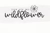Wishful - Bold Handwritten Script example image 5