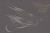 Calligraphic Birds Family Pack example image 9