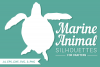 Marine Animal Silhouettes for Crafters example image 3