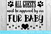 All Guests Must Be Approved By Our Fur Baby SVG House Sign example image 1
