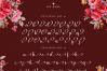 Beautyface Script example image 6