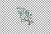Cotton bolls and fir branch leafy autumn and winter decor example image 16