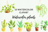 10 Indoor Plants Watercolor Clipart, Garden & Cactus Decor example image 1