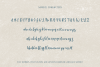 Sanibel Brush Font example image 10