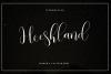 Heeshland//Modern calligraphy font example image 1