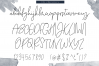 Kate Johnson - A Signature Script Font (with alternative) example image 10