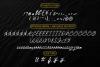 Acterum Signature Font - 26 Extra Swash example image 9