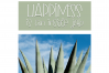 Aloe - A Fun Handwritten Font example image 2
