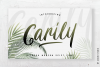 Carily Modern Script example image 1
