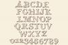 Tatianna   Vintage Font Family example image 14