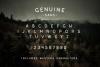 Genuine Script - Textured Type Duo example image 4