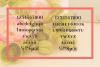 Gorni Typeface example image 3