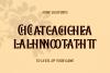 Baisteach | Vintage Serif example image 8