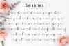 Delisha Script example image 15