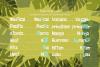 Freaky Tiki - a fun tropical font example image 7