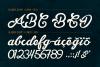 Slugger - Vintage Family Font example image 4