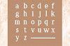 Delia - Regular & Bold Serif example image 4