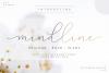 Mindline Script example image 1