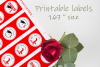 Red Printable Stickers Graduation 2019 - size 1.67 inches example image 2