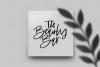 Washington - A Handwritten SVG Script Font example image 9