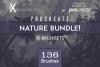 Procreate Nature BUNDLE! example image 1