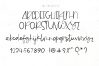 Mishap - A Chic Handwritten Font example image 11