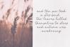 Harvest - A Handwritten Script Font example image 4