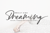 High Dreaming // Natural Handwritten example image 1