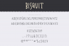 Bisquit   A Unique Serif example image 10