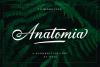 Anatomia Script example image 1