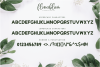 Flowerbloom Font Trio example image 13