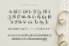 Sibertha - Font Duo - example image 10