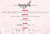 Ningsih Script | Luxury Font example image 5