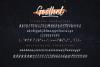 Gosthel - Dry Brush Font example image 7