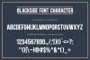 Blackside Font example image 4