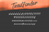 Trailfinder | A Brush Script Font example image 9