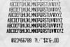 Echo 14 Font Family + Bonus example image 7