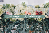 Dream Only | Handwritten Font example image 8