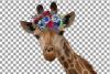 Floral crown giraffe animal wall art. Watercolour giraffe. example image 6