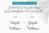 Abigale Font Duo Set example image 8