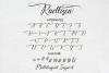 Raellisca Script example image 10