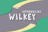 Wilkey Typeface example image 1